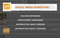3 Tips to Market your Practice on Social Media