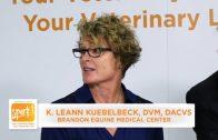 Corporate Consolidation In Veterinary Medicine