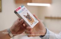 Advertisement: Protect Patients From Fleas & Ticks for up 12 Weeks With BRAVECTO®