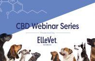 CBD Webinar Series — Introduction
