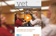 VET Report Continues to Investigate Pet Obesity