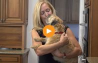 The Omega-3 Supplement One Doctor Chooses for Her Pets and Patients