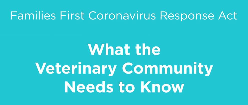 COVID-19 Article