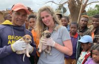 On the Frontlines of the Fight Against Rabies