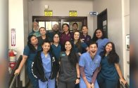 Clinic Spotlight: Wise Owl Animal Hospital