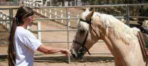 GAINING THE TRUST of a rescued horse takes time and a lot of patience. Here, Karina works with Triton, a Bureau of Land Management mustang, on trust building and acceptance exercises.