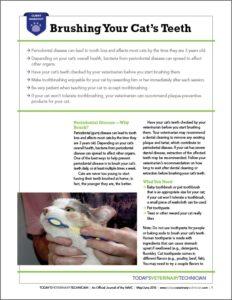 TVET-Web-Handout_Brushing-Teeth-Cat_Thumb.jpg