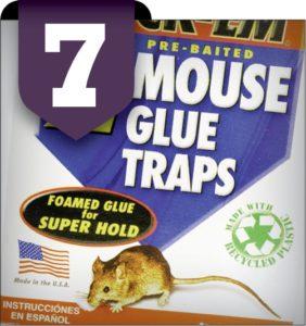 7. GLUE TRAPS Image courtesy of shutterstock.com/Jeffrey B. Banke