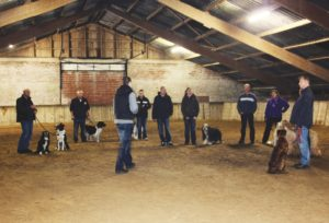 FIGURE 1. The class in the horse arena.