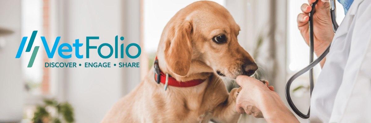 online veterinary ce